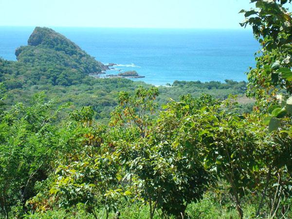 Selva del Mar - Calvet & Associates